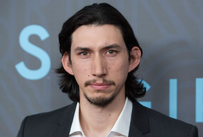 cat-look-alike-adam-driver-1