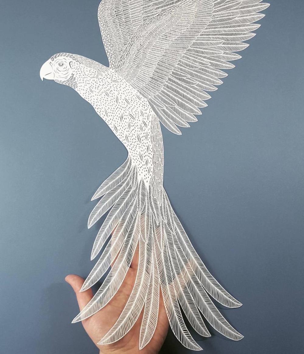 papercut-art-pippa-dyrlaga-16