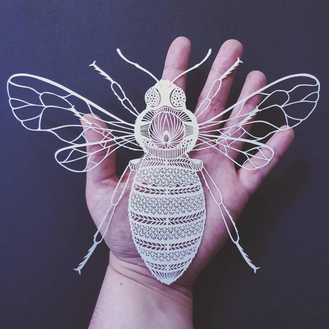 papercut-art-pippa-dyrlaga-4
